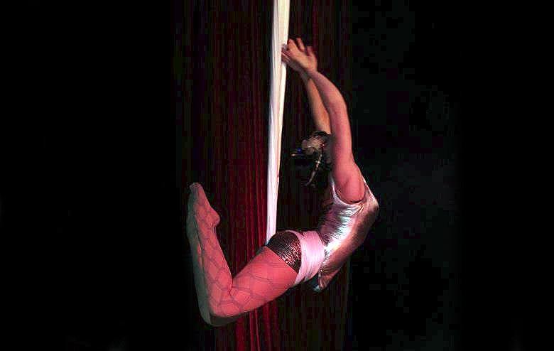 Silk Aerialist Performance