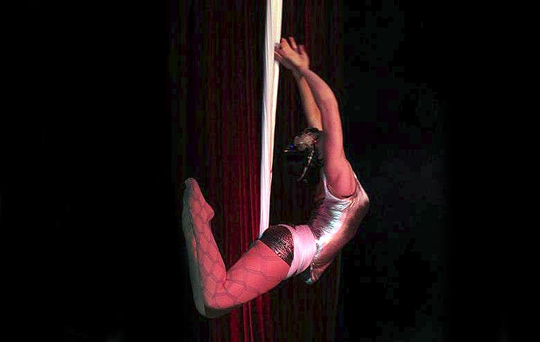 Silk Aerialist Performance