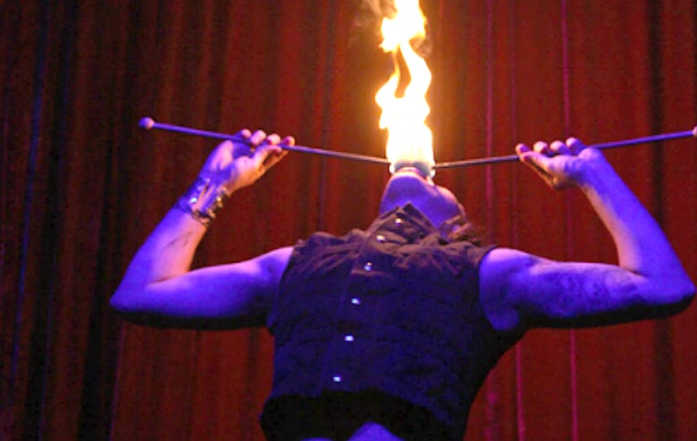 Professional Fire Shows