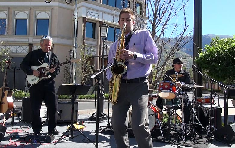 Experienced Musical Trio with Vocalist Options