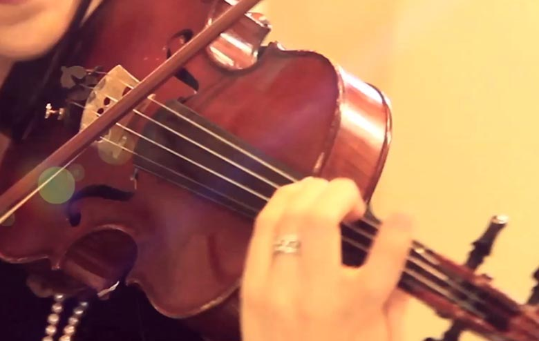 String Quartet - Violins, Viola, and Cello - Live Wedding String Music
